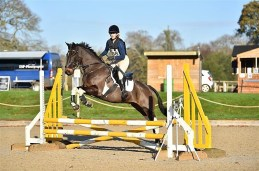 Area Arena Eventing2 071220