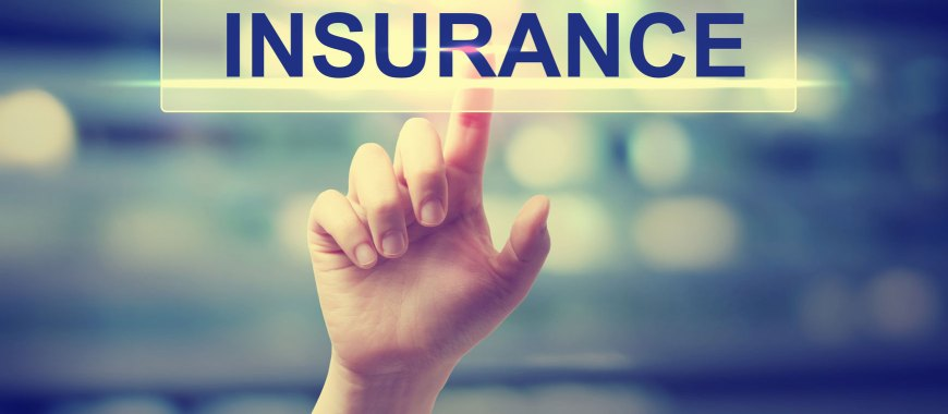 Insurance Policy Renewal Southold NY