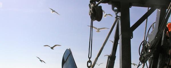 Fishing in Montauk