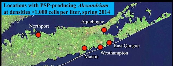 Red tide bloom locations on Long Island this spring | LICCRA image