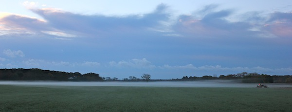 Misty morning farmland.