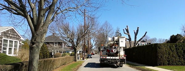 Folks in East Hampton Village are none-too-happy with the series of tall electric transmission poles installed over this past winter.