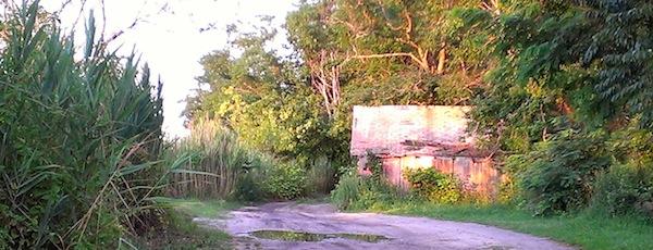 Scallop shack at sunset.