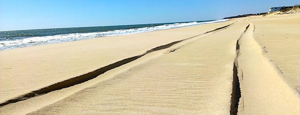 Montauk's oceanfront could soon be buffered with geotubes filled with sand.