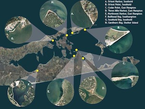 CCE's eelgrass meadow monitoring sites