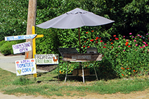 Bette and Dale's Farm Stand by Stacy Dermont