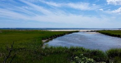 Downs Creek, Cutchogue