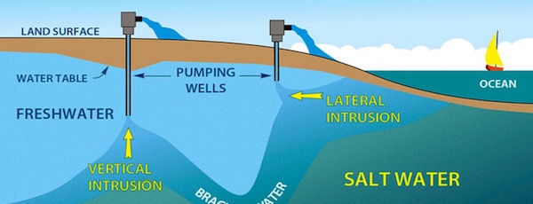 A graphical description of saltwater intrusion in the LICAP report.
