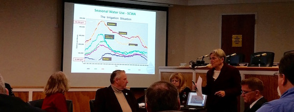 Glynis Berry of Peconic Green Growth discussed water pumping issues with the Southold Town Board Tuesday.
