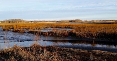 Saturday morning, West Creek