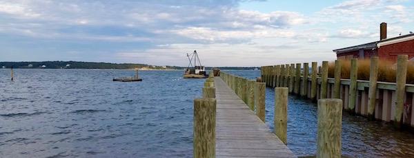 October Oystering, New Suffolk