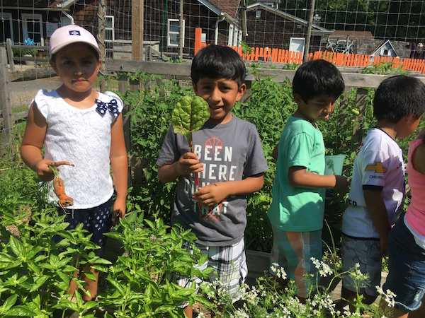 Kids from the Child Care Center harvest vegetables from the garden.