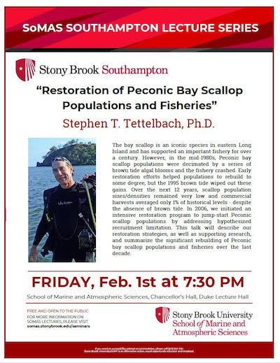"SoMAS Lecture: ""Restoration of Peconic Bay Scallop Populations and Fisheries"" at Stony Brook Southampton"