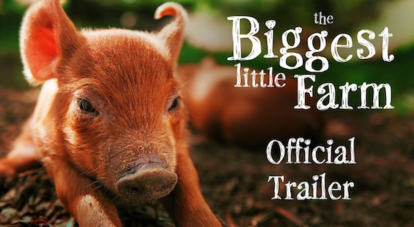"The film poster for ""Biggest Little Farm."""