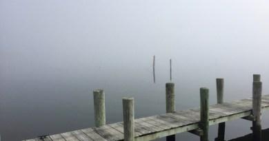 In the fog, Sunday.
