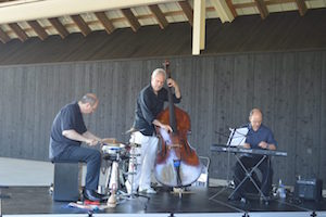 Jazz on the Terrace: Nilson Matta at the Parrish Art Museum