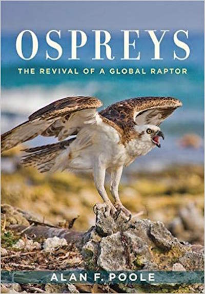 "NFAS Lecture: Alan Poole discusses ""Ospreys, The Revival of A Global Raptor"" at Poquatuck Hall"