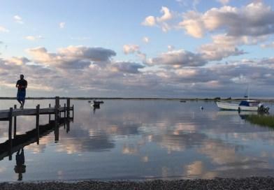 At Red Creek, Saturday. Hampton Bays.