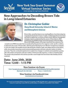 New York Sea Grant Lecture with Christopher Gobler
