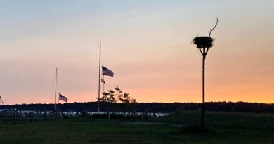 Flags, sunrise, New Sufffolk