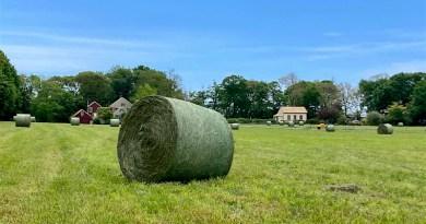 winds way hay