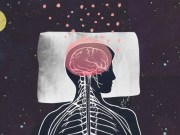 What you need to know about sleep and brain functioning