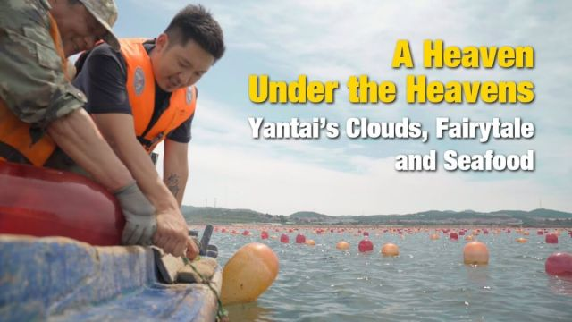 China Matters explores the Fairytale City of Yantai