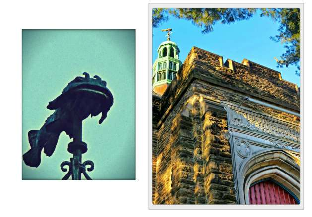 Eastfallslocal catfish library collage again