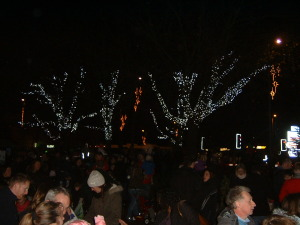 Crowds gather to see Hedge Ends Lights switched on