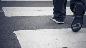 Zebra Crossings