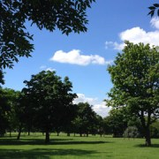 Hilly Fields, Brockley