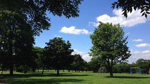 Hilly Fields, Brockley