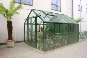 Greenhouse. Image Credit: Celia Chin
