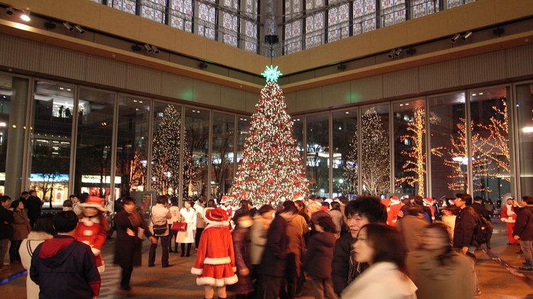 Christmas tree Pic: François Rejeté