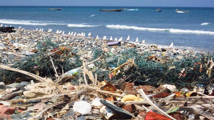 Waste on a beach