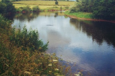 East Mayo Anglers' Association Fishing Club & Fishery with over 9 miles of water.