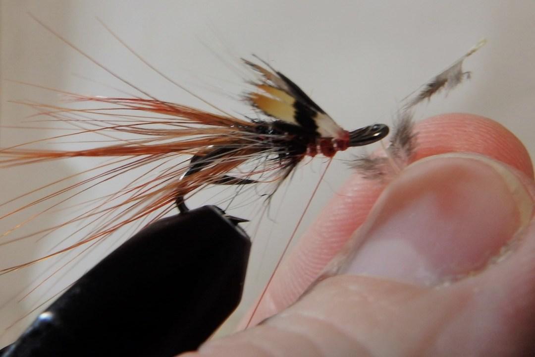 Shrimp flies 13
