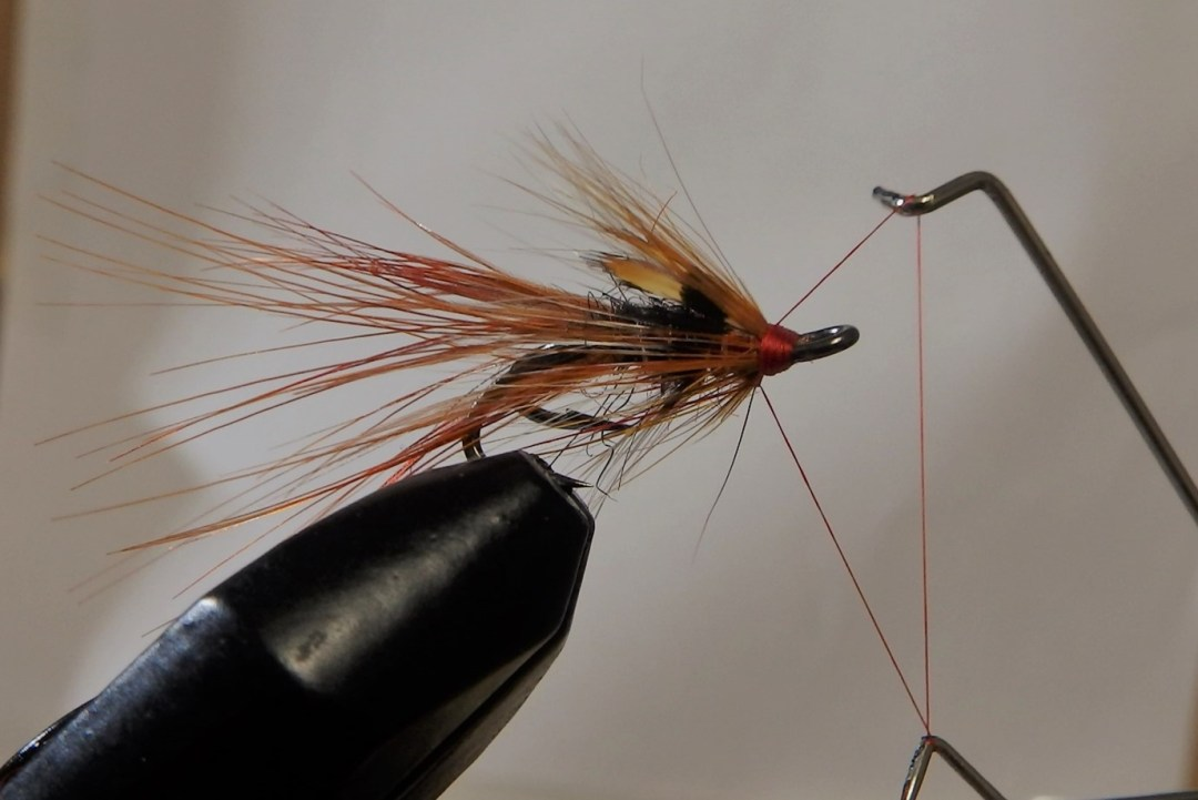 Shrimp flies 15