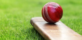 Three-year energy partnership for Derbyshire Cricket