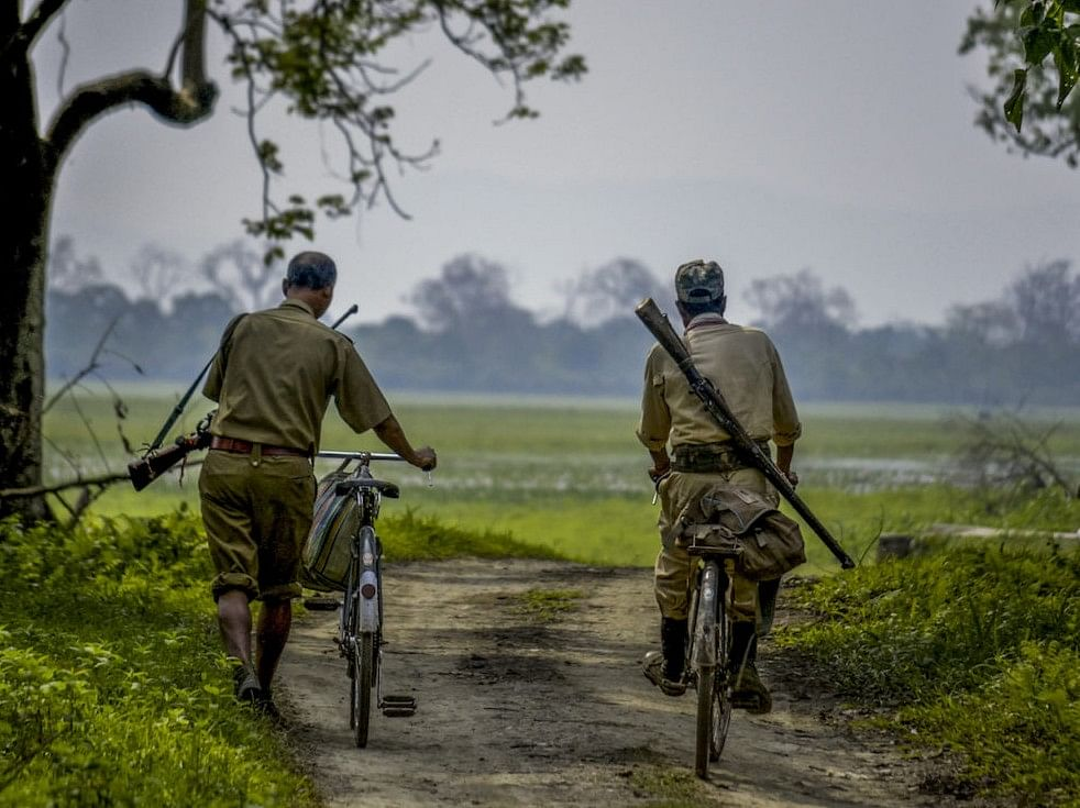 Meghalaya govt proposes to arm forest guards to fight poaching