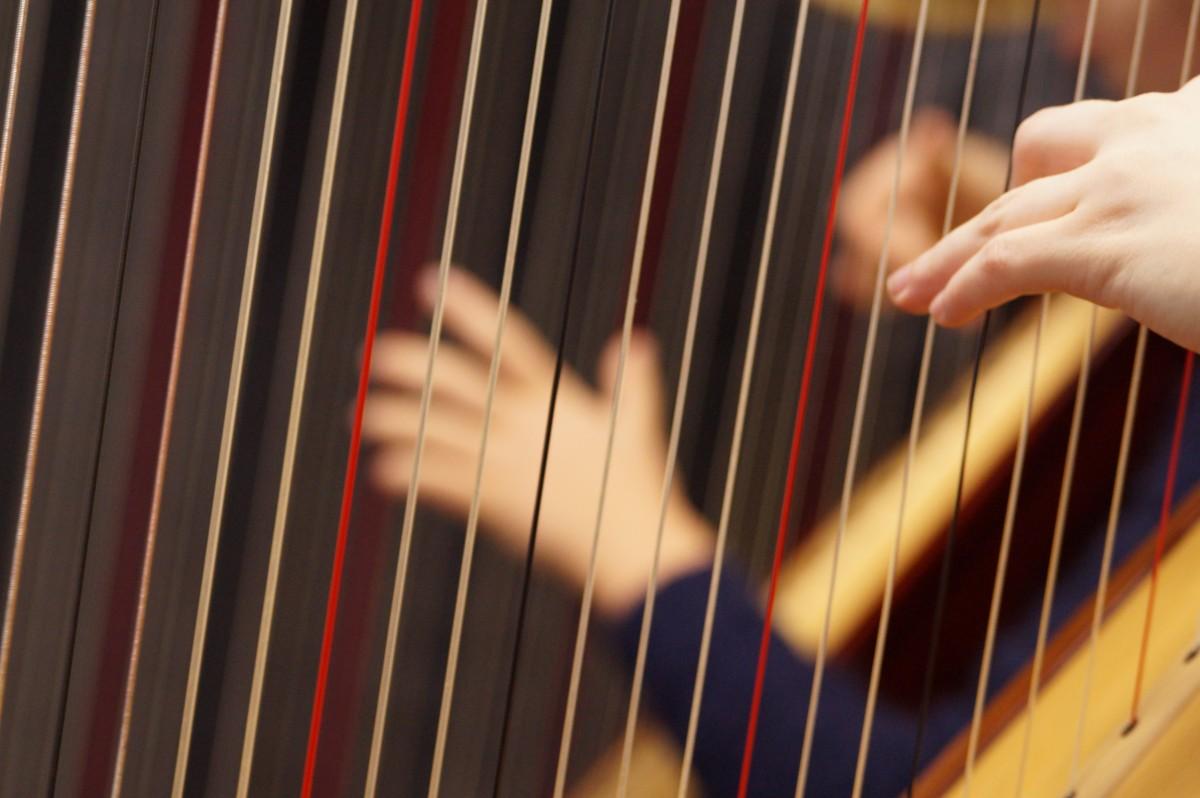 musical instrument harp concert harp stringed instrument hands 555698
