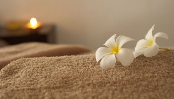 relaxation 686392 960 720