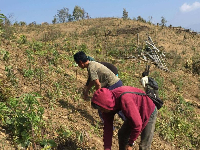 Villagers engaging in farming works
