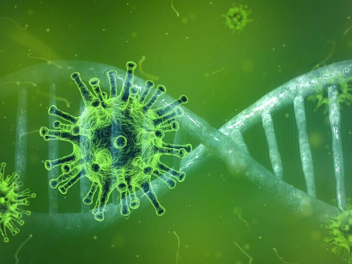 UK variant of coronavirus linked to significantly higher death rate