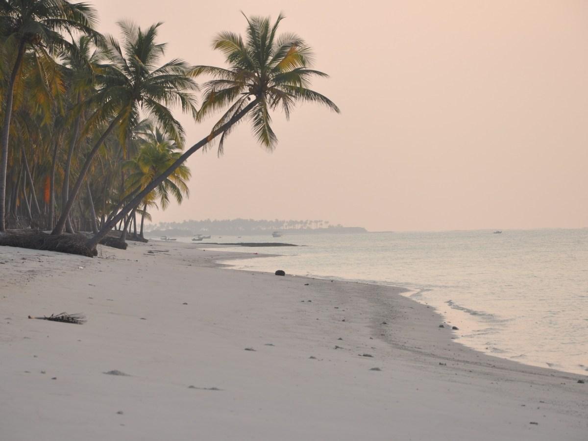 Three Lankan boats apprehended off Kerala coast; narcotics seized