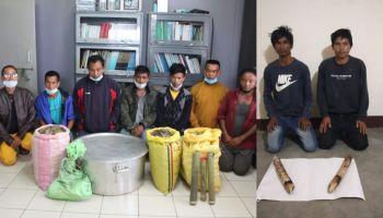 Meghalaya wildlife trafficking