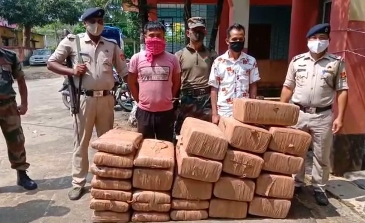 Watch: Ganja worth Rs 1.8 Cr seized at Assam-Tripura border, 2 held