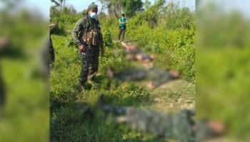 Assam: Six DNLA militants killed in encounter in Karbi Anglong