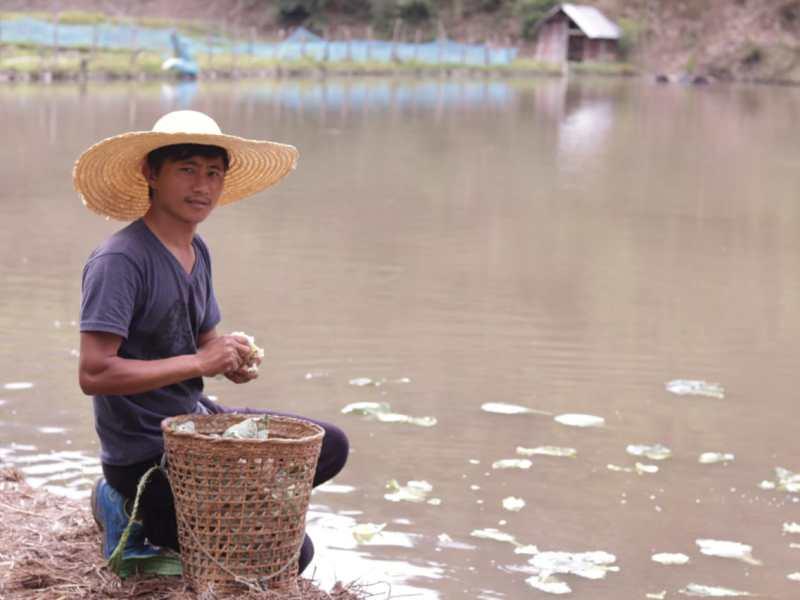 Ukhrul farmers