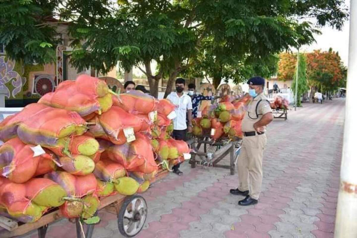 After pineapples and lemons, now Tripura farmers to export jackfruits to UK